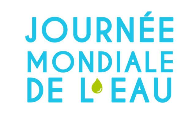 Journée mondiale de l'eau : les gestes à adopter